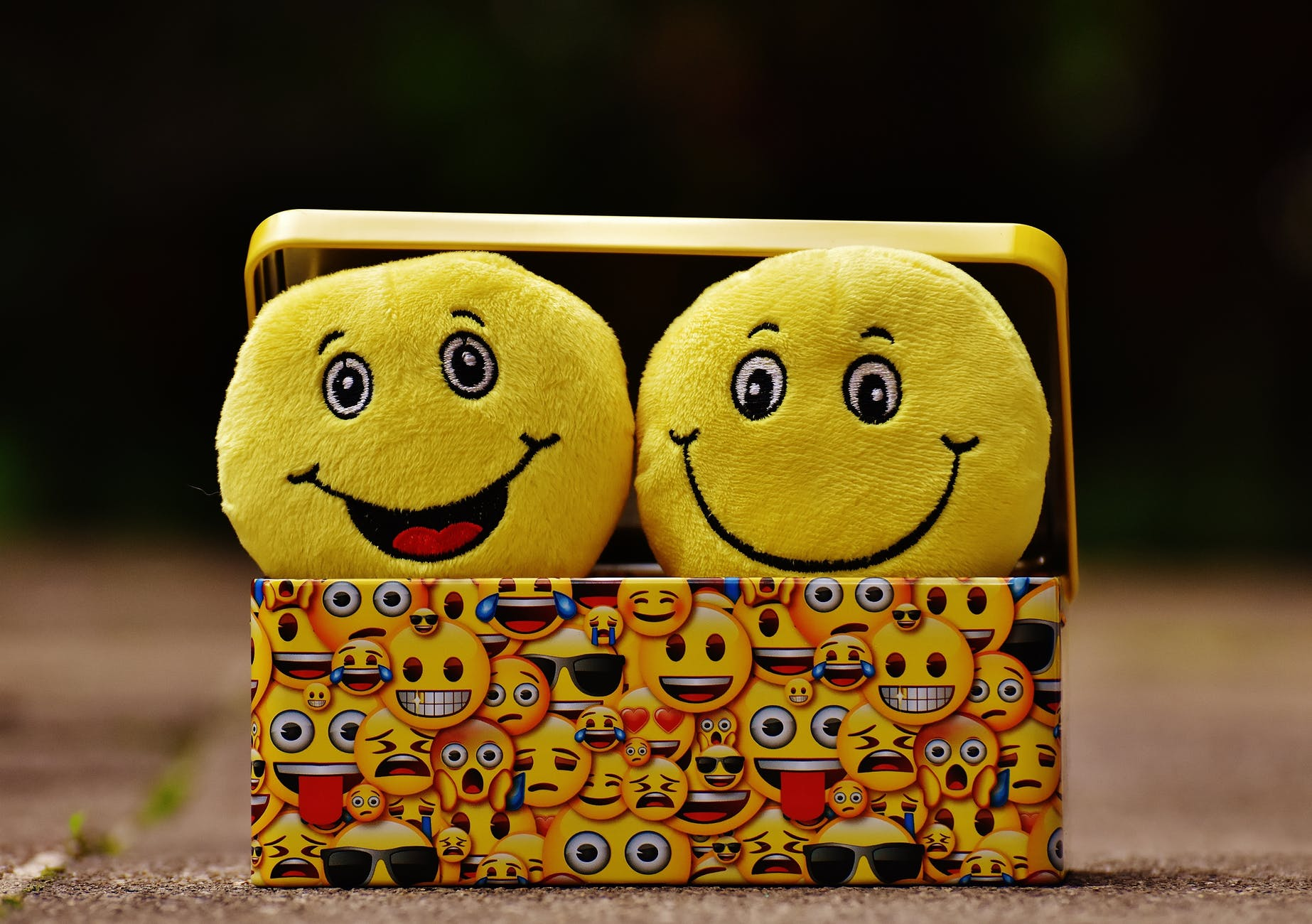 box cheerful color cute