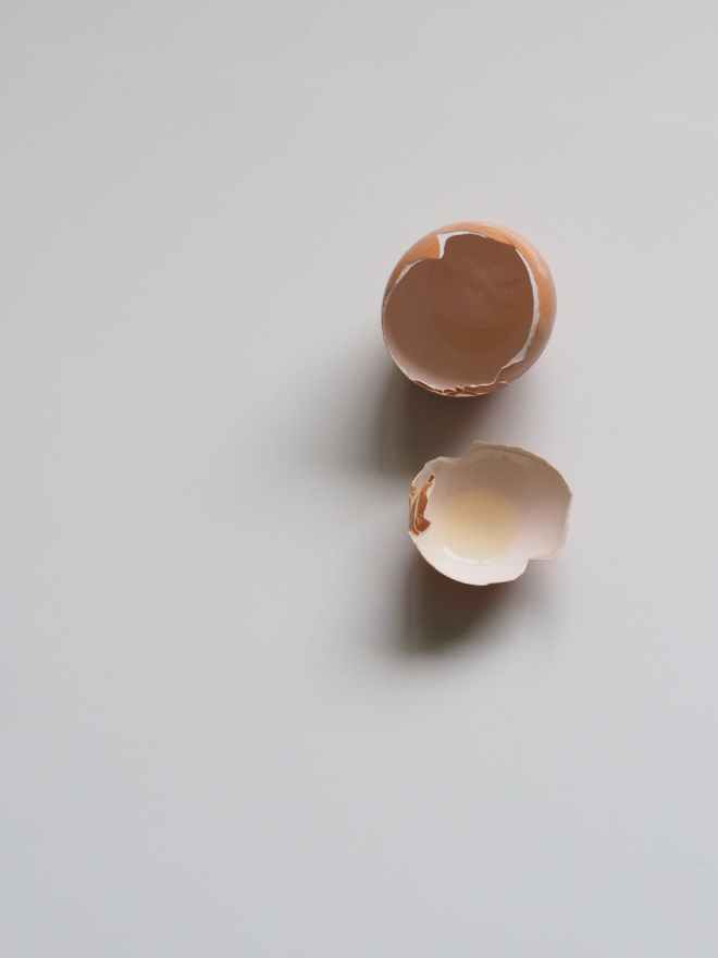 brown egg shell on white surface